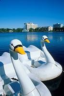 Swan boats Lake Eola Orlando Florida