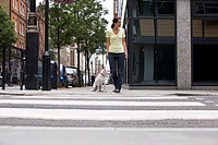 A young woman and her dog waiting to cross the road