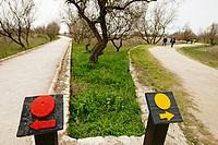 Parque Nacional de las Tablas de Daimiel, Ciudad Real Province, Castile-La Mancha, Spain.
