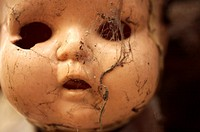 A doll covered with spider web hangs on a tree on the Island of the Dolls in Xochimilco, southern Mexico City. The late Don Julian turned his ´chinamp...