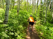 Mature woman mountain biking on trail