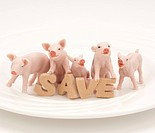 Toy pigs and SAVE sign on a plate.