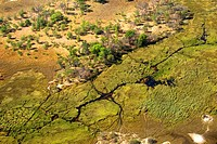 Aerial photography of the Okavango Delta, river channel draining swamp with islands at the end of the dry season in October