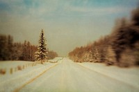 A composite pictorialist photograph of a snow_covered rural road in a forested area of Alberta, Canada