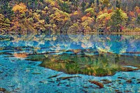 Fall color at Peacock Lake, Jiuzhaigou, China