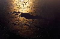 Pancake ice forming, Sabine Island, Greenland