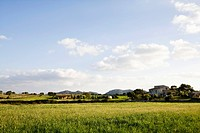 Villa and Mediterranean countryside (thumbnail)