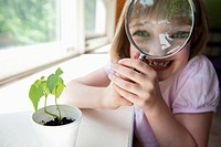 Girl looking at plant experiment