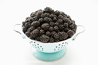 Blackberries in a colander