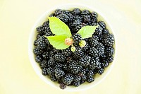 Blackberries (thumbnail)