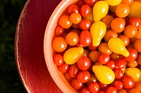 Tomatoes in a bowl (thumbnail)