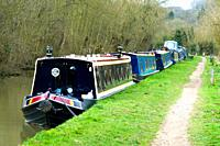 Residential narrowboats on winter mooring near Heyford, Oxfordshire