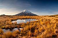 Mt Egmont / Taranaki, panorama at dawn, reflection in small tarn set among tussock slopes of Pouakai range, Taranaki.
