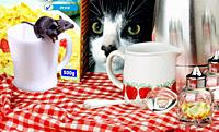 Cat and mouse at breakfast table