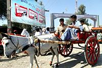 donkey cart in pakistan