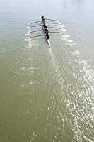 Canada, BC, Fort Langley.  A team of eight rows their boat in the Head of the Fort rowing regatta