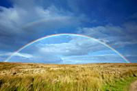 Rainbow, over moorland, autumn, Allendale, Northumberland, England