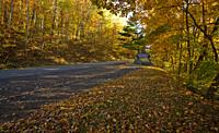 Autumn, Foothills Parkway, East Tennessee