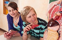 Germany, Emmering, Girl and boy 12_13 watching at human organs model, smiling