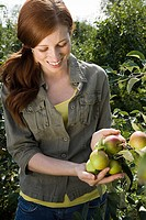 Young woman looking at apples in field