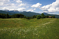 Germany, Bavaria, View of hump_meadow with karwendel mountains in background