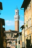 Mangia Tower, Siena, Italy