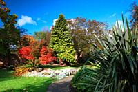 Autumn colour at Jubilee Gardens, Bewdley, Worcestershire, England