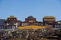 Yunnan,Diqing,shangri_la,Songzanlin Temple,