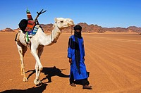Tuareg nomad leading his dromedary across a vast plain in the Acacous Mountains, Sahara desert, Libya