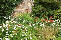 Summer Flower Boder at Guisborough Priory Redcar and Cleveland England