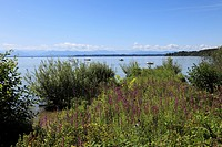 View from the Roseninsel island, Starnberger See Lake, Fuenfseenland region, Upper Bavaria, Bavaria, Germany, Europe