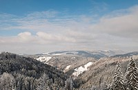 Snow-covered hills of the Black Forest, view on Mt. Kandel in winter, Black Forest, Baden-Wuerttemberg, Germany, Europe