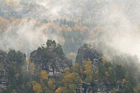 Fog in autumn in the Elbe Sandstone Mountains, Saxon Switzerland, Saxony, Germany, Europe