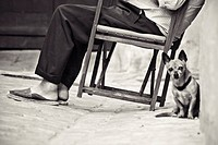 Elderly man sitting on typical Minorca chair (aka. 'Coca Rossa') with dog. Ciutadella de Menorca, Minorca, Balearic Islands, Spain
