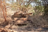 destroyed Northern Sudanese tank, Juba-Bor road, December 2010