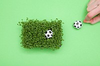 Fresh cress with miniature footballs and a hand