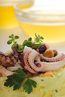 Calamari in beer