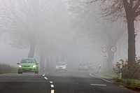 Road between Essen and Bochum in dense fog, autumn, visibility below 100 metres, North Rhine_Westphalia, Germany, Europe
