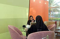Arab Lady indoors working on a computer and talking