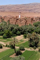 Desert village on the edge of the desert with an oasis at front, Morocco, Africa