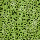 An illustration of a green abstract background