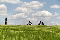 Field of barley, bike riders and church steeple of Lampoding, lake Waginger See, Chiemgau, Upper Bavaria, Germany, Europe