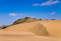 Sand dune in the Skeleton Coast Park, Namibia, Africa