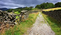 Drystone wall lined trackway into the mountains, Scandale, Lake District National Park, Cumbria, England