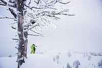 Male free skiers in deep snow, Mayrhofen, Ziller river valley, Tyrol, Austria