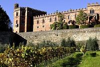 Brolio Castle, Chianti, Tuscany, Italy, Europe