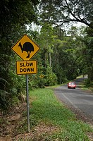 A sign warning drivers of Cassowary birds on the road Queensland Australia
