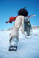 Skier ascenting a mountain, Ehrwald, Tyrol, Austria