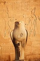 Statue of Horus, Temple of Horus, Edfu, Egypt, Africa