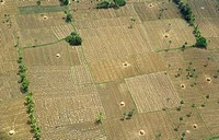 Aerial view of tilled and uncultivated field , Andhra Pradesh , India